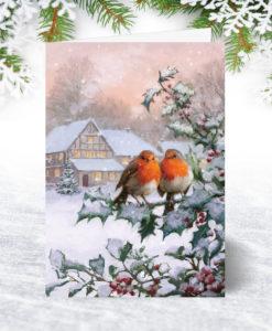 Christmas Robins Christmas Card