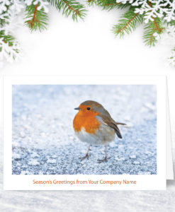 Frozen Ground Christmas Card