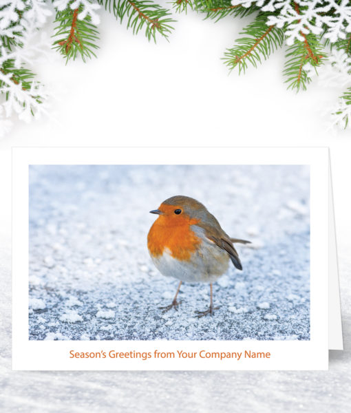 Frozen Ground Christmas Card