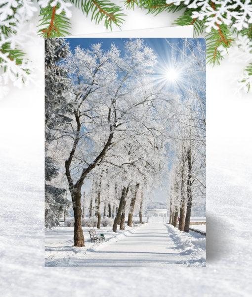 Snow Covered Path Christmas Card