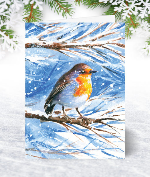 Snow Robin Christmas Card U0064