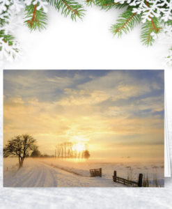 Winter Sun Christmas Card