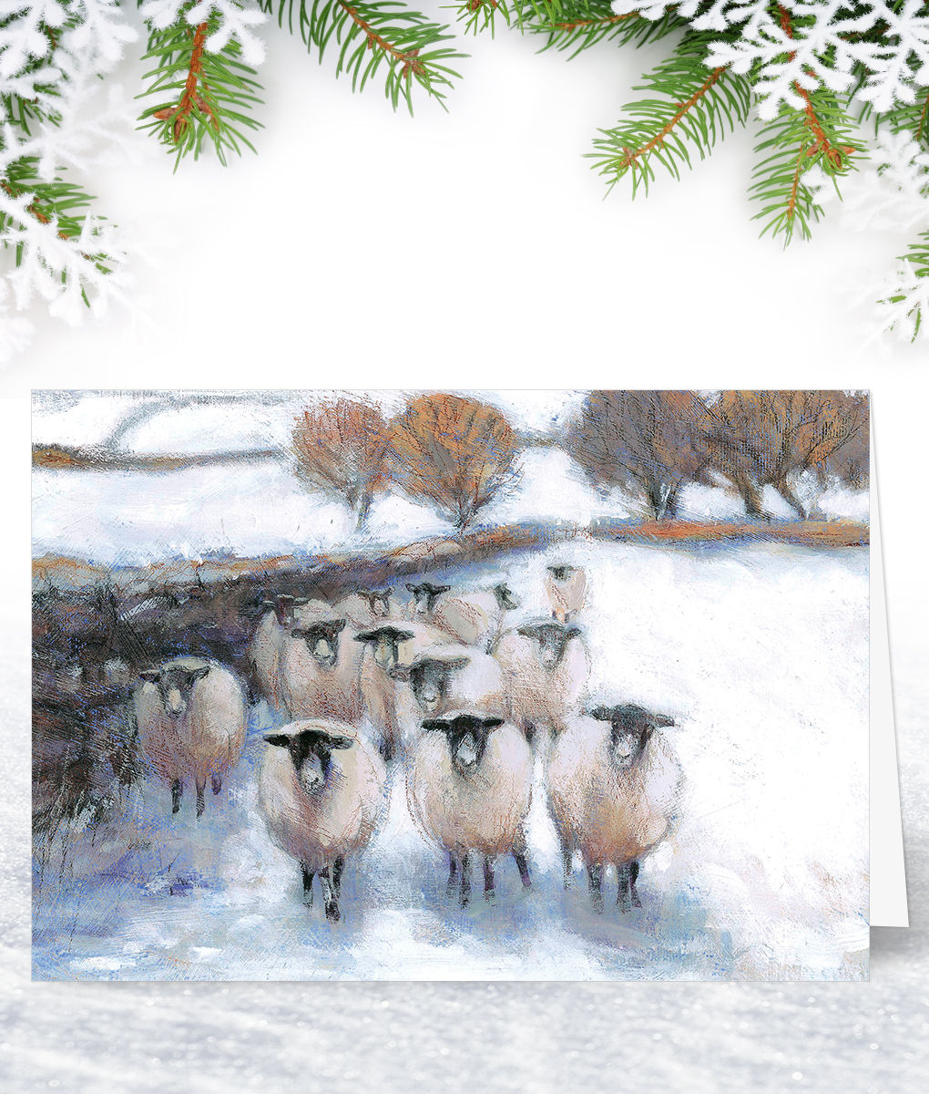 Sheep Christmas Cards 2020 Sheep in Snow Christmas Card   Corporate Collection