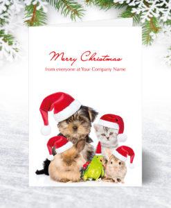 Winter Friends Christmas Card
